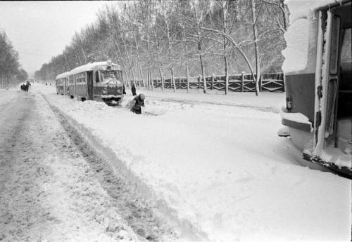 Трамваи на улице Гагарина во время снегопада 2 мая 1984 года